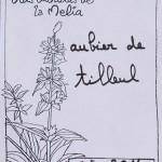 Aubier de tilleul composition