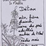 Detox composition