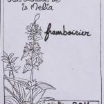 Franboisier composition